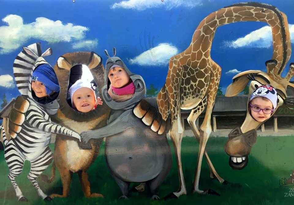 Przygoda Gumisiów z Safari